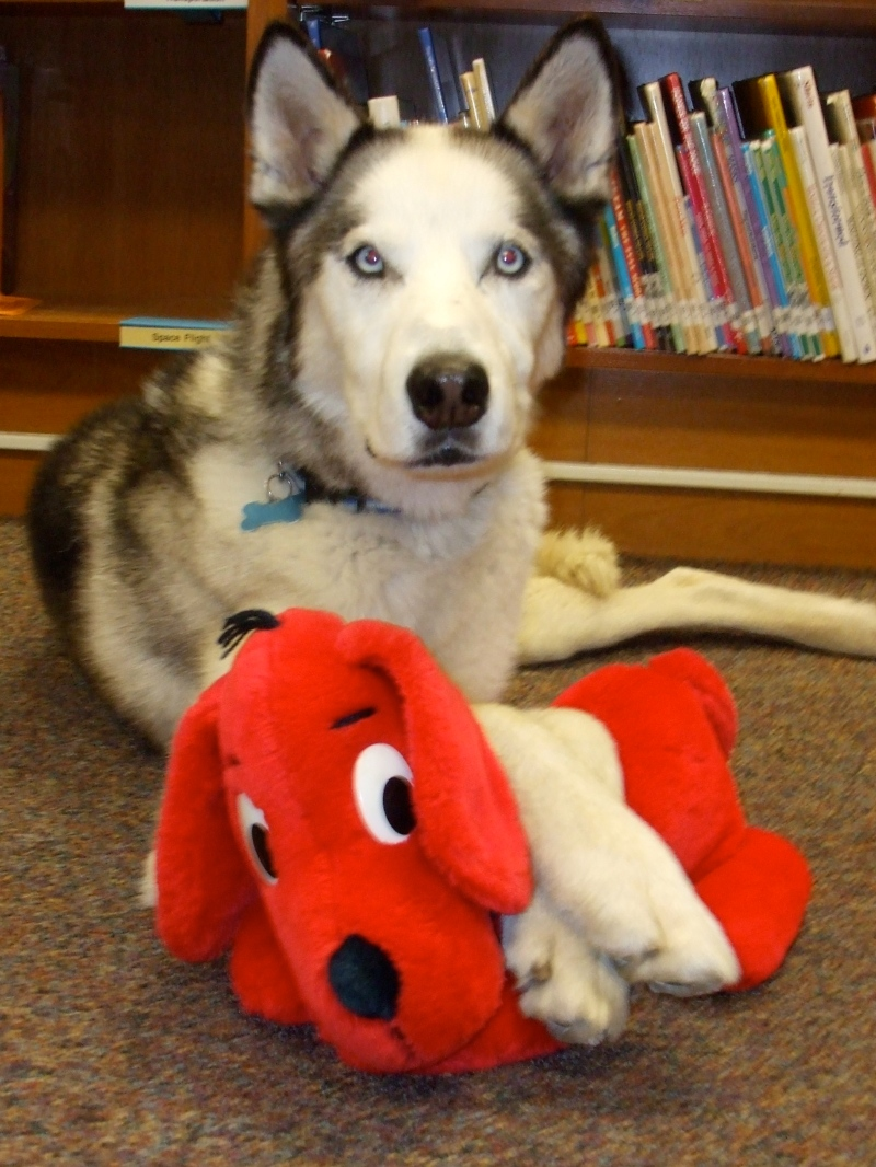Borage (the Alaskan Husky) and Clifford (the Big Red Dog)