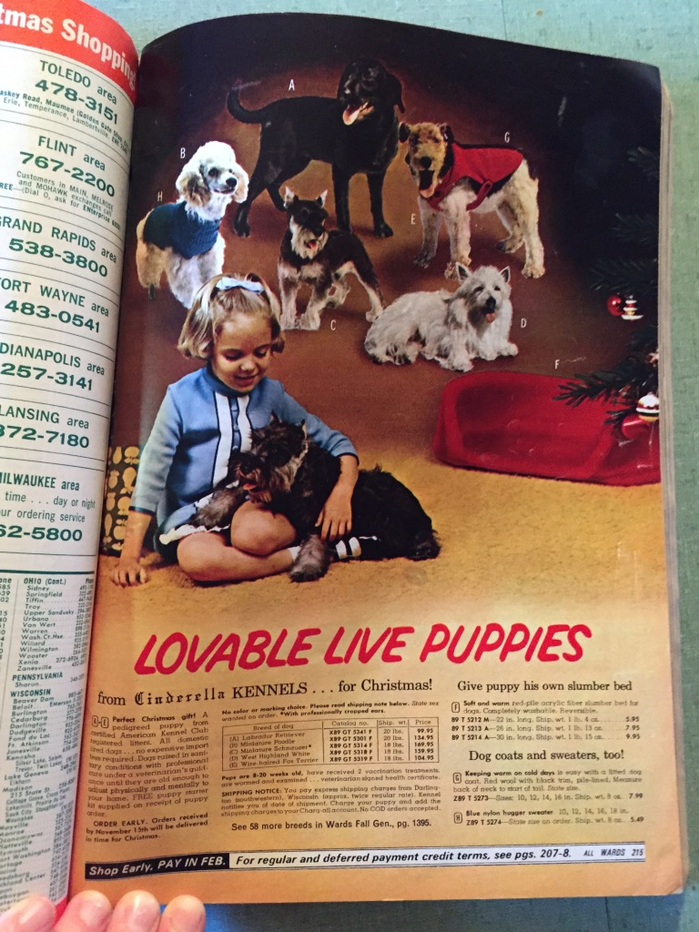 I am sure Mom and Dad kept it because of the cute puppies. They were dog lovers too.